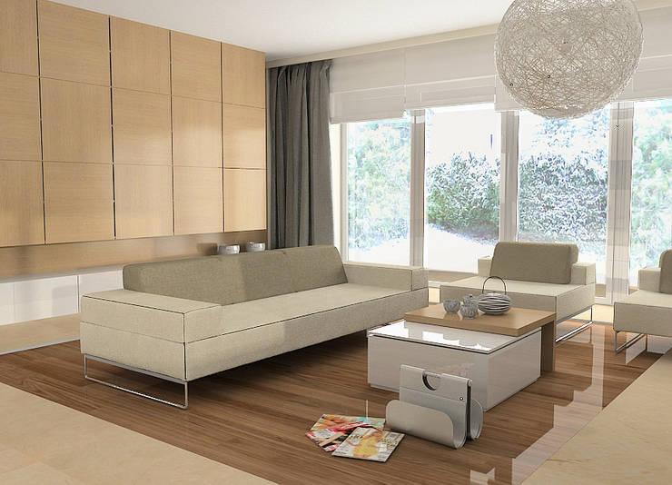 Projekt wnętrza domu w Łodzi: styl , w kategorii Salon zaprojektowany przez Projektowanie wnętrz Berenika Szewczyk