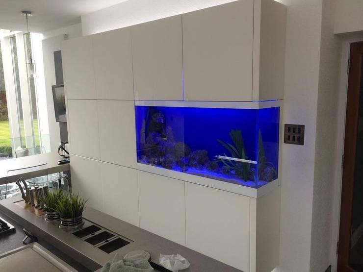 DC Aquariumsが手掛けたキッチン