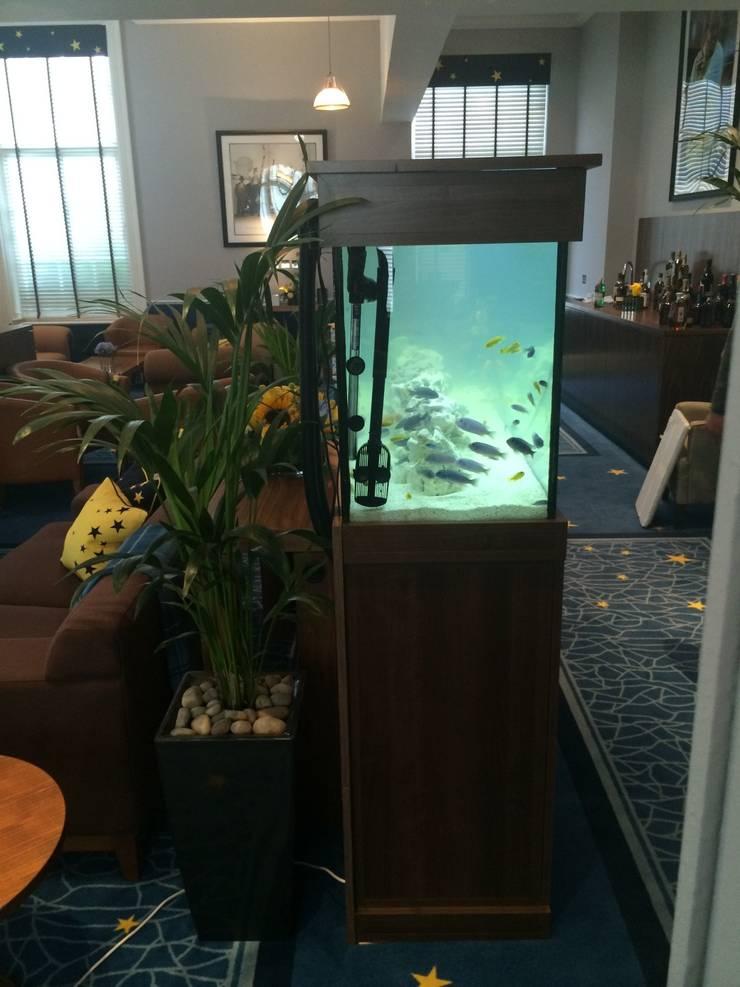 Team Europe Ryder Cup Aquarium, Gleneagles Hotel:  Hotels by DC Aquariums