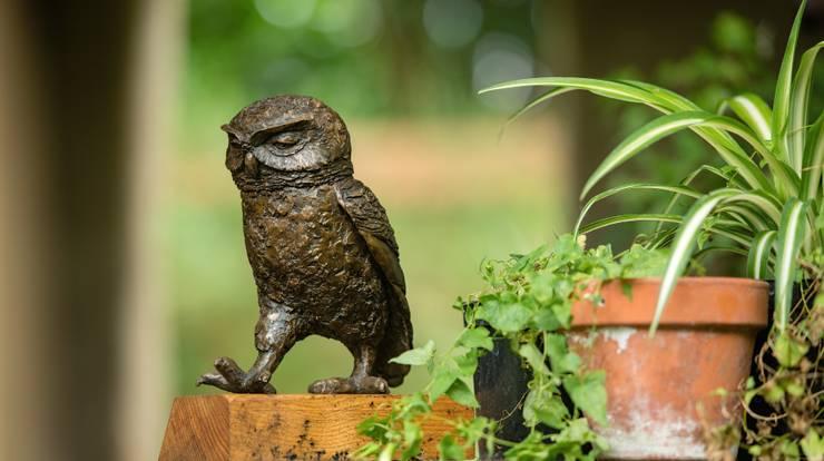 LITTLE OWL II   (Passing Time):  Artwork by Marie Shepherd