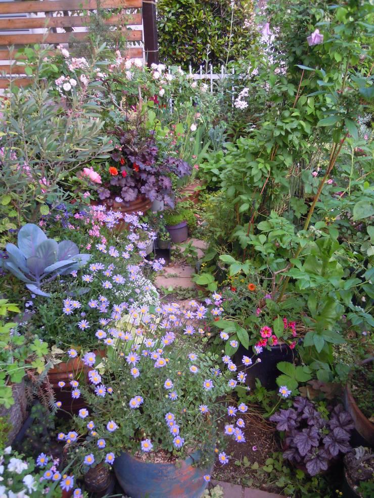 コンテナとレンガでつくる庭: Green Team  coが手掛けた庭です。