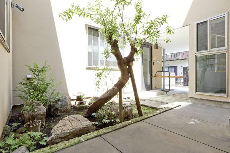สวน by 光風舎1級建築士事務所