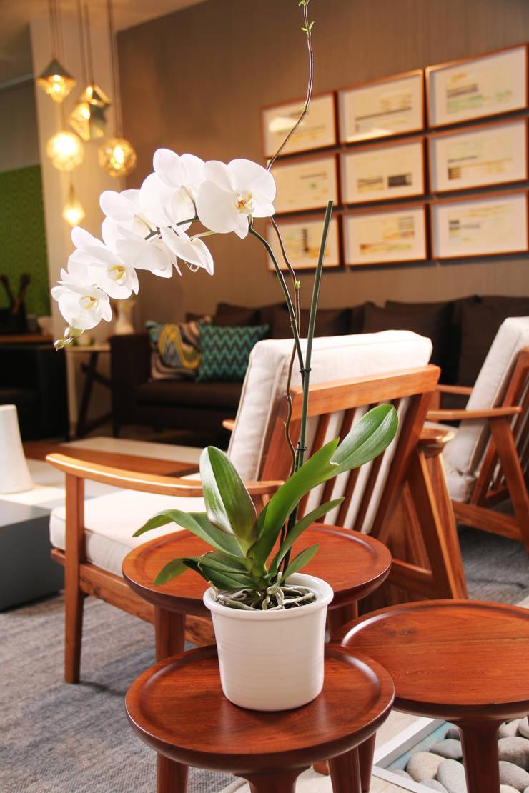 TOCOMADERA Showroom, Guadalajara.: Salas de estilo  por TocoMadera