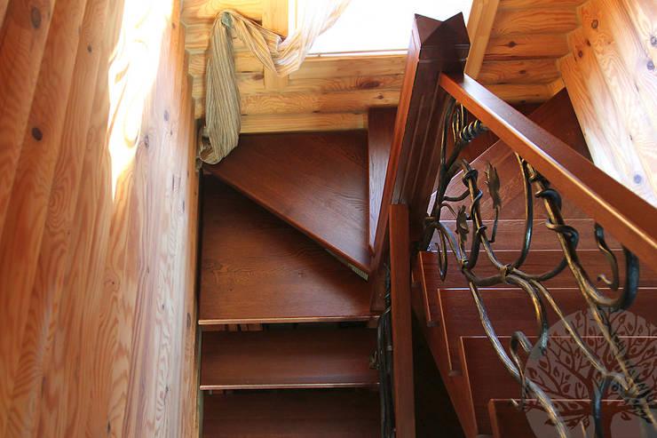 Деревянные двери из дуба:  в . Автор – Lesomodul, Классический