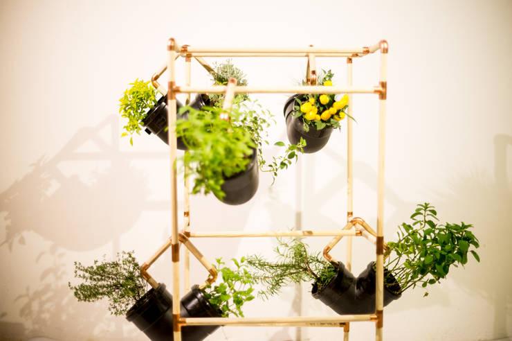 Jardín de estilo  por Mono Studio