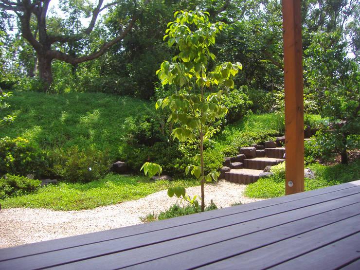 階段方向の眺め: 新美園が手掛けた庭です。
