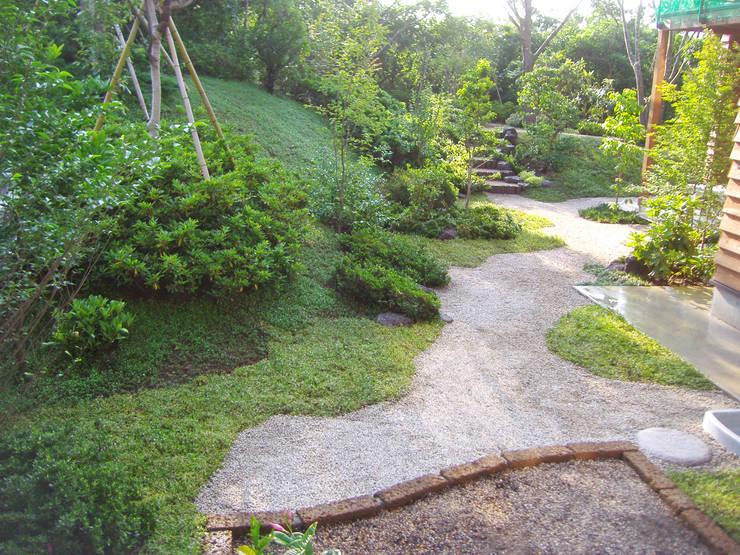 主庭の全景: 新美園が手掛けた庭です。