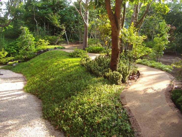 主庭と建物裏手を結ぶ園路: 新美園が手掛けた庭です。