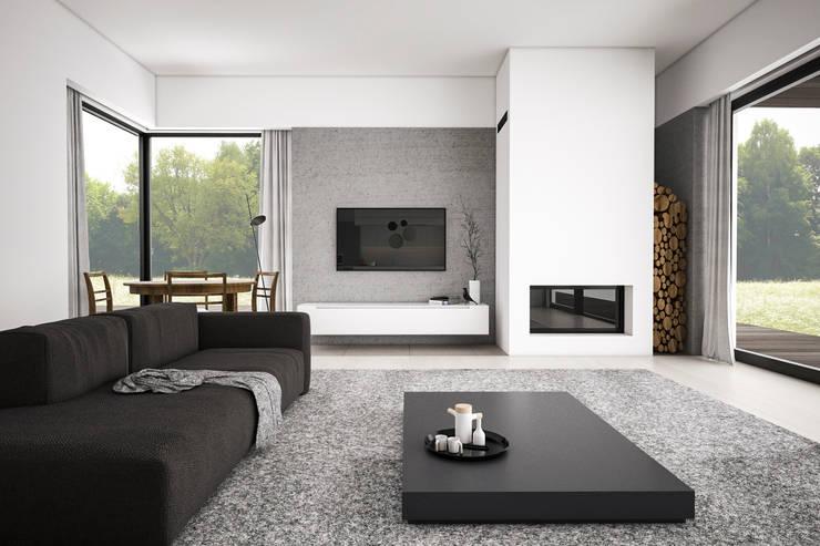 Dom podmiejski – wnętrza: styl , w kategorii Salon zaprojektowany przez zwA Architekci,Skandynawski