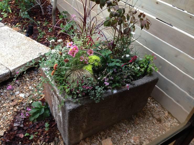鉢植え: Garden design office萬葉が手掛けた庭です。