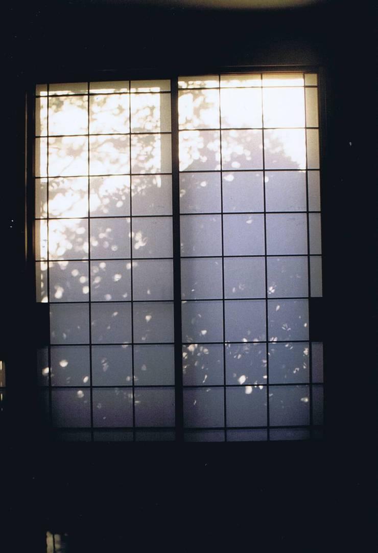 影絵3。朝陽障子に天然色・自宅: 樹・中村昌平建築事務所が手掛けた現代のです。,モダン