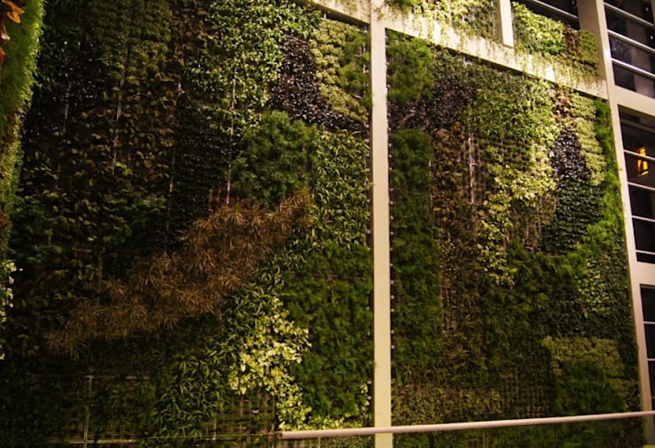 Projekty,  Centra handlowe zaprojektowane przez abelia peyzaj, Egzotyczny