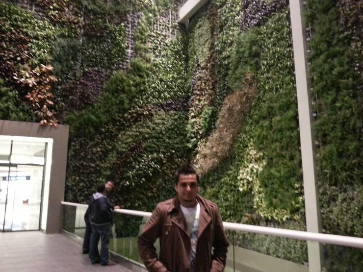Projekty,  Ściany zaprojektowane przez abelia peyzaj, Egzotyczny