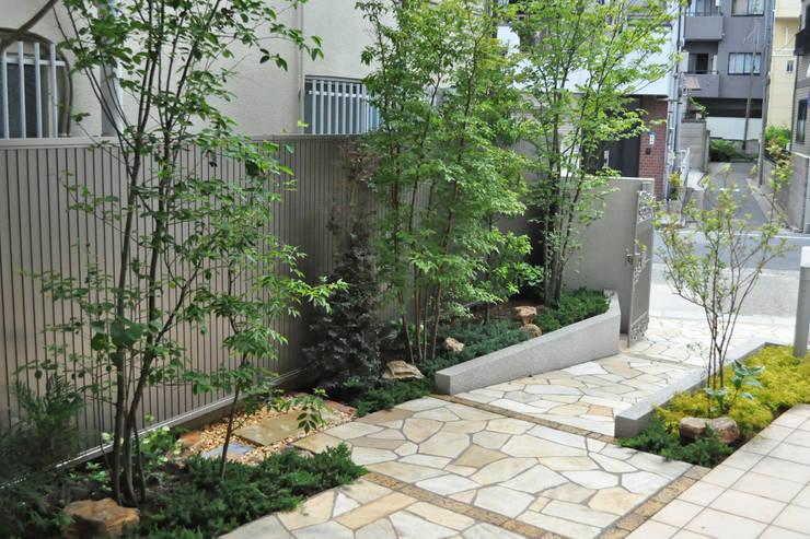 アプローチに寄り添う木立: 新美園が手掛けた庭です。