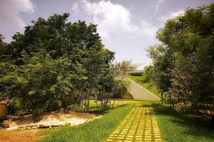 Modern garden by sanzpont [arquitectura] Modern