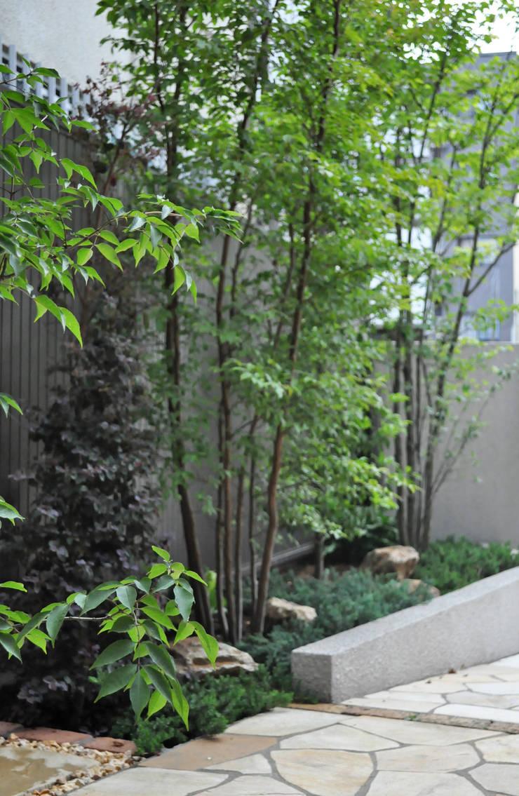 重なり合いの魅力: 新美園が手掛けた庭です。
