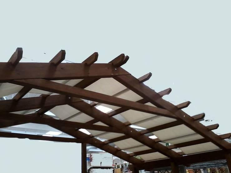 Projekty,  Ogród zaprojektowane przez Zuhause Claudio Molinari