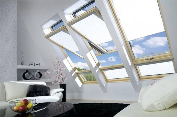 Windows & doors  by Fakro Pivot Çatı Pencereleri