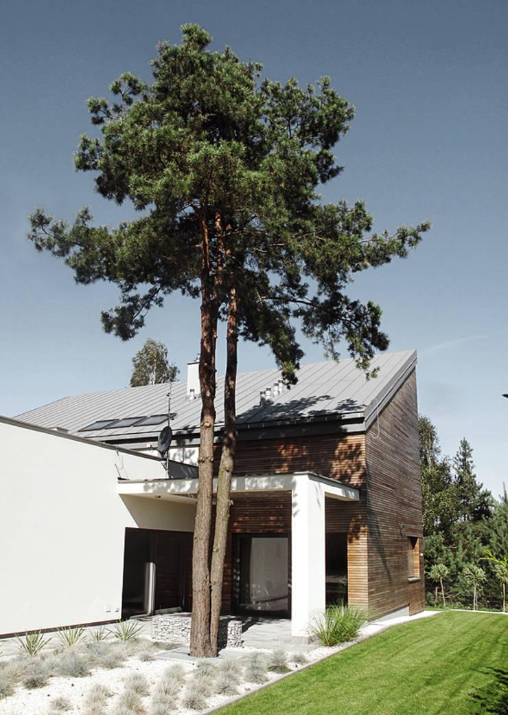 Maisons modernes par MACIEJ JANECZEK ARCHITEKT Moderne