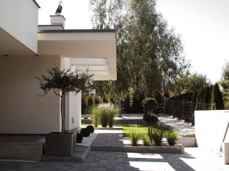 Huizen door MACIEJ JANECZEK ARCHITEKT
