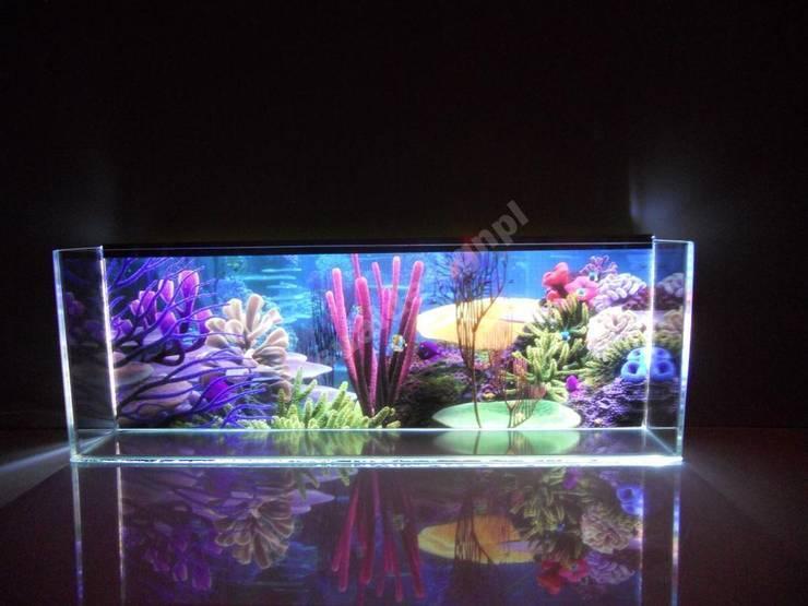 Akwarium Led: styl , w kategorii Gospodarstwo domowe zaprojektowany przez Visual Design