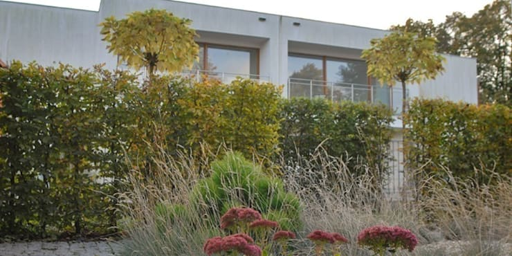 jesień w ogrodzie: styl , w kategorii  zaprojektowany przez Autorska Pracownia Architektury Krajobrazu Jardin ,