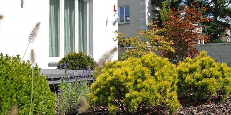 przy tarasie szeroka donica zamiast barierki: styl , w kategorii  zaprojektowany przez Autorska Pracownia Architektury Krajobrazu Jardin