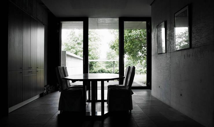 Blick aus dem Essbereich: moderne Esszimmer von dürschinger architekten