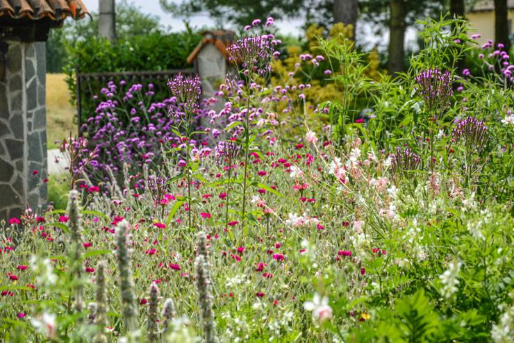 Projekty,  Ogród zaprojektowane przez Ginkgo Giardini