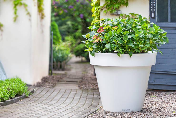 Nowoczesna donica Gianto: styl , w kategorii Ogród zaprojektowany przez TerraForm