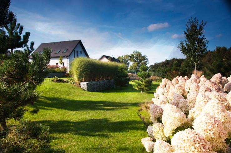 Сады в . Автор – SPRING architektura krajobrazu
