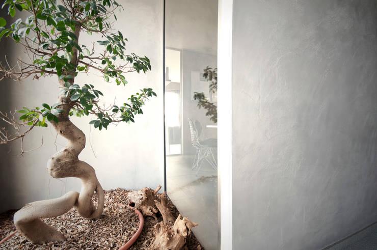 ściana   szpachlowana betonem: styl , w kategorii Ściany i podłogi zaprojektowany przez TG STUDIO