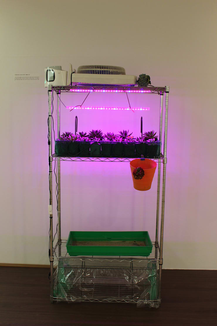 식물 요양 시스템: 이사하는 정원의