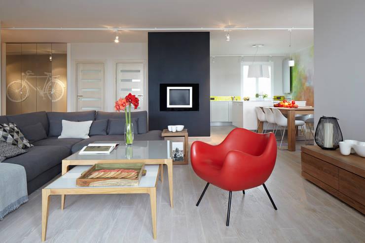 Living room by Pracownia Projektowa Hanna Kłyk