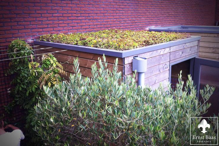 Sedumdak:  Tuin door  Ernst Baas Hoveniers B.V. / Ernst Baas Tuininrichting B.V.