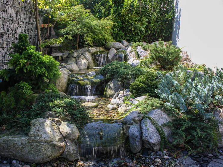 Jardines de estilo asiático de -GardScape- private gardens by Christoph Harreiß
