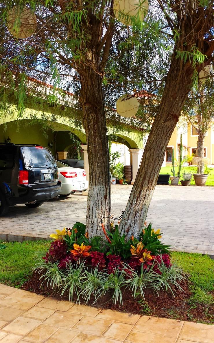 CASA AA-14: Jardines de estilo  por EcoEntorno Paisajismo Urbano