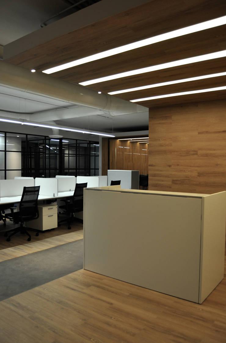 Офисы и магазины в . Автор – DF ARQUITECTOS, Модерн