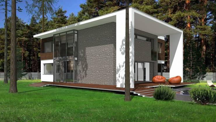 Dom Passive_Luxury_1: styl , w kategorii Domy zaprojektowany przez ABC Pracownia Projektowa Bożena Nosiła,Minimalistyczny