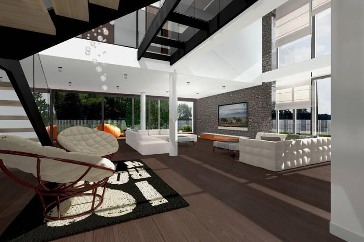 Dom Passive_Luxury_1: styl , w kategorii Salon zaprojektowany przez ABC Pracownia Projektowa Bożena Nosiła,Minimalistyczny