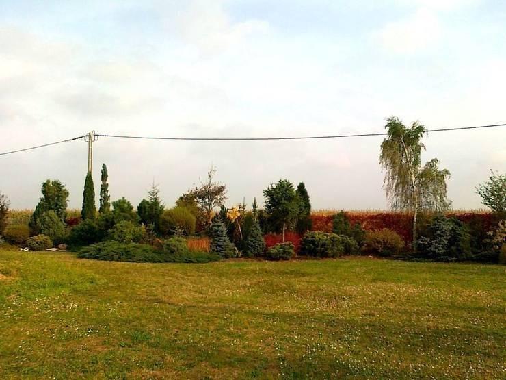 Jesienne kontrasty: styl , w kategorii  zaprojektowany przez Garden Ekspert Studio Architektury Krajobrazu