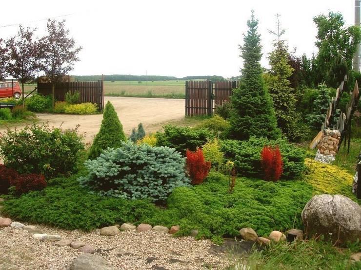 Berberysy ożywiają kompozycję: styl , w kategorii  zaprojektowany przez Garden Ekspert Studio Architektury Krajobrazu
