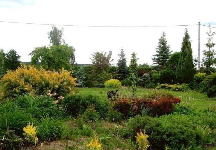 Widok na ogród: styl , w kategorii  zaprojektowany przez Garden Ekspert Studio Architektury Krajobrazu