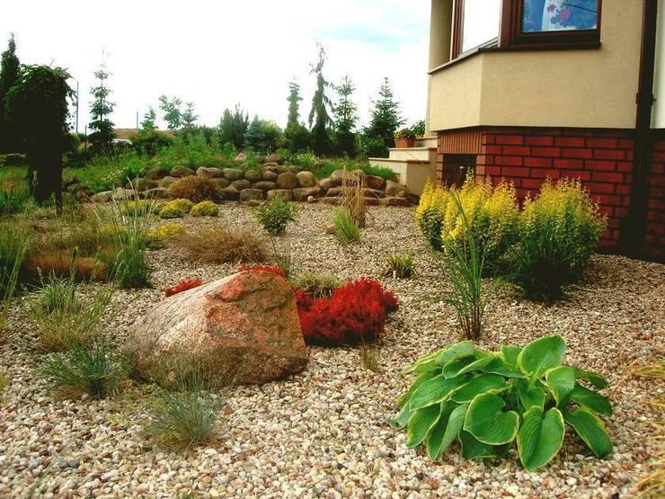 Rośliny w żwirze: styl , w kategorii  zaprojektowany przez Garden Ekspert Studio Architektury Krajobrazu