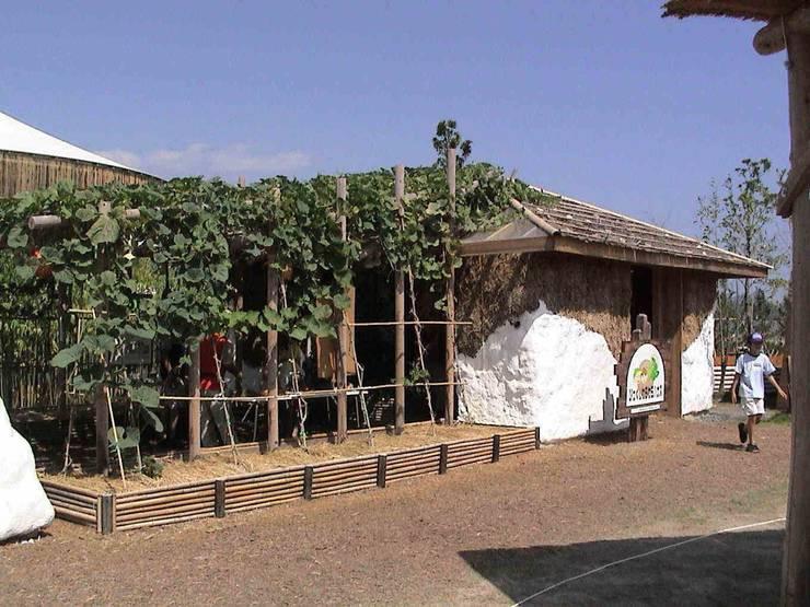 外観 オリジナルな 家 の アトリエ・K建築設計工房一級建築士事務所 オリジナル