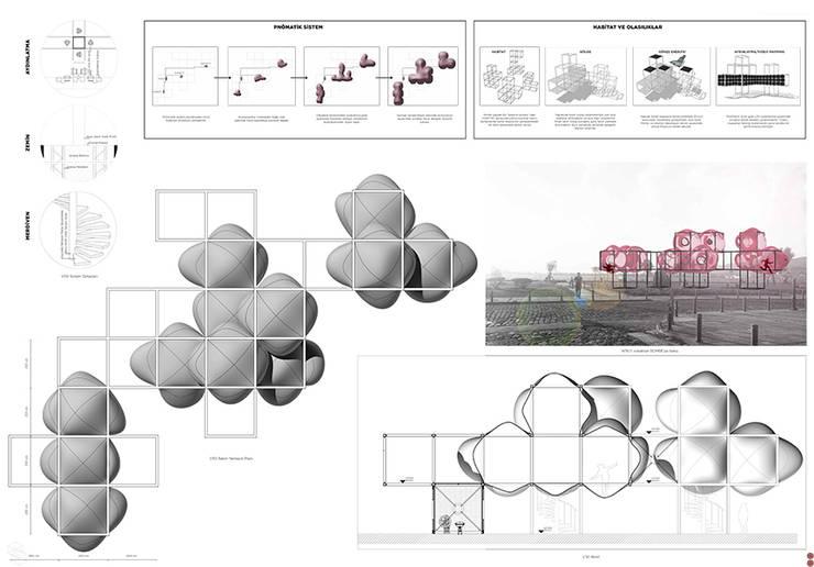 Praxis Peyzaj Mimarlığı ve Kentsel Tasarım – Habitat:  tarz , Akdeniz
