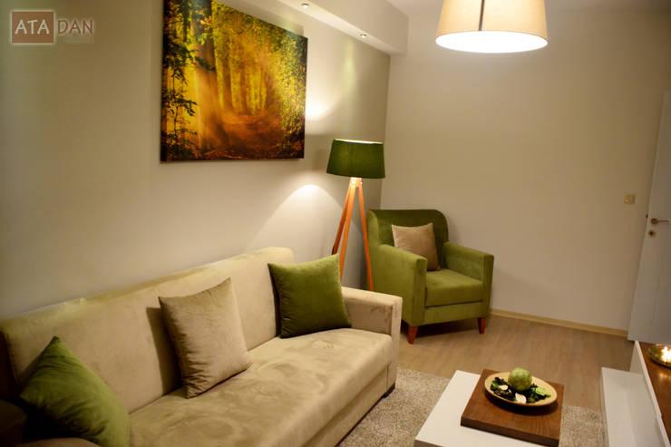 ROAS Mimarlık – Genel Görünüm - Misafir Odası: modern tarz Oturma Odası