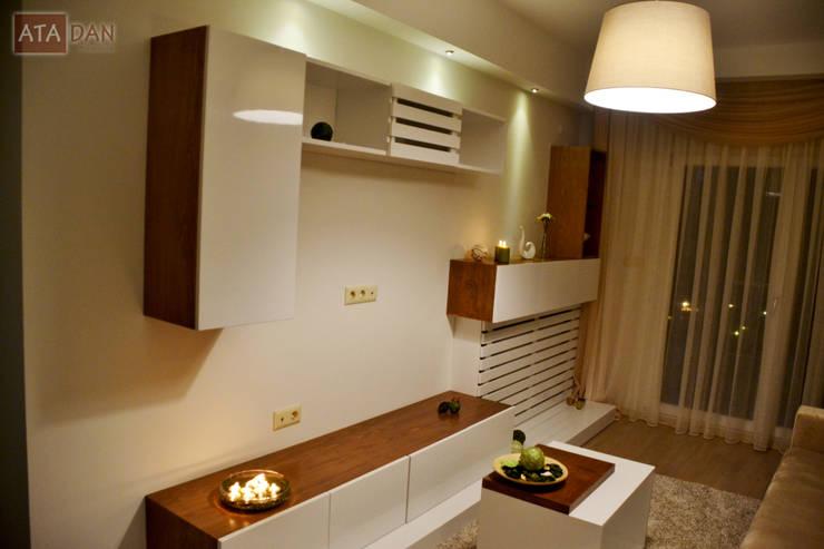 ROAS Mimarlık – TV Ünite - Misafir Odası:  tarz Oturma Odası