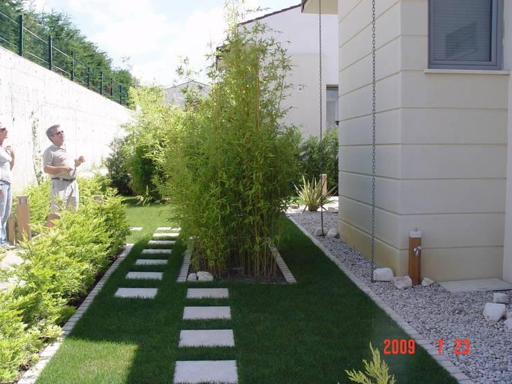 GREENLİNE PEYZAJ – GREENLİNE PEYZAJ :  tarz Bahçe