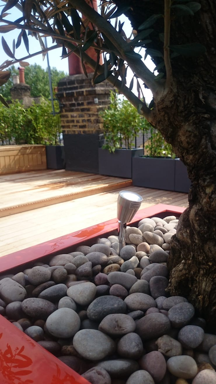 East London roof terrace:  Terrace by Paul Newman Landscapes